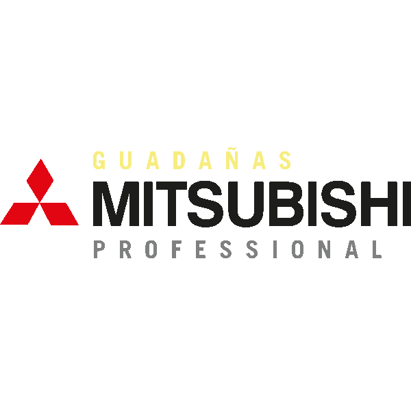 Mitsubishi Professional